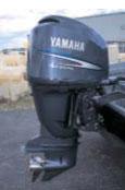 тест лодочного мотора Yamaha F 250